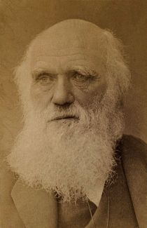 Charles_Darwin_by_Barraud_c1881-crop-1