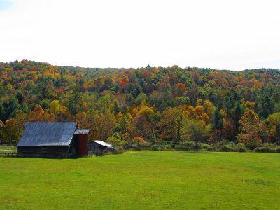 barn-field-fall-trees_-_west_virginia_-_forestwander